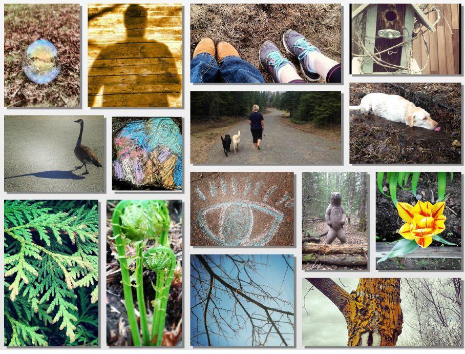 30x30 Challenge collage