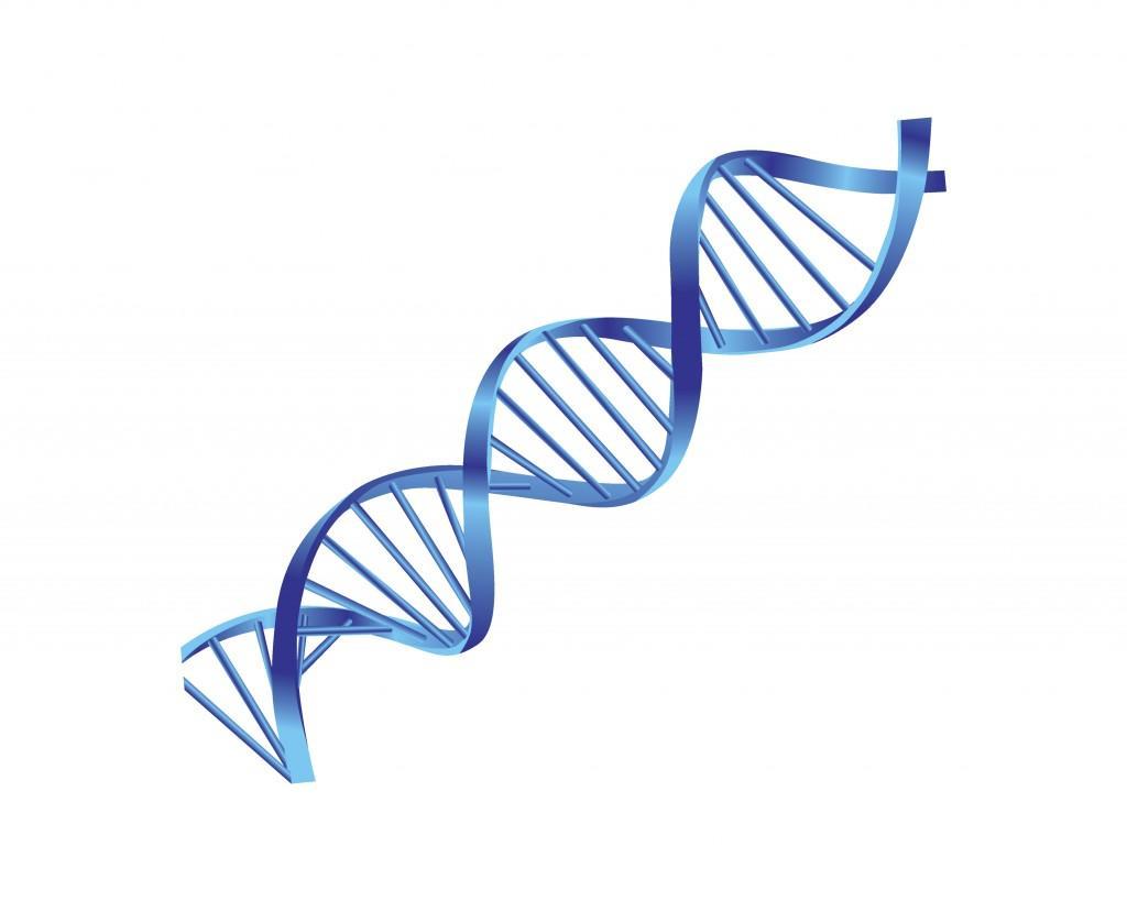 Genetics Program